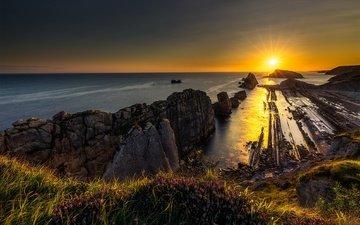 цветы, скалы, камни, берег, закат, пейзаж, море, побережье, испания, кантабрия, каменная гряда, коста кебрада
