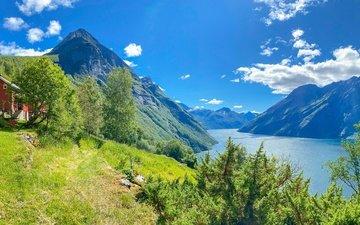 деревья, горы, панорама, дом, норвегия, сарай, норвегии, фьорд