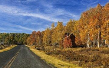небо, дорога, трава, облака, деревья, лес, осень, дом, путь, домик, синева, особняк, шоссе, обочина