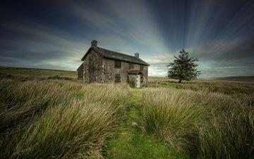 небо, поле, дом