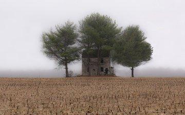 туман, поле, дом